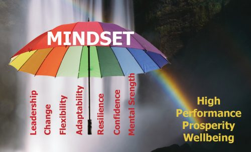 Sue shines a mindset lens on Leadership, Adaptability and Resilience for high performance, prosperity and wellbeing